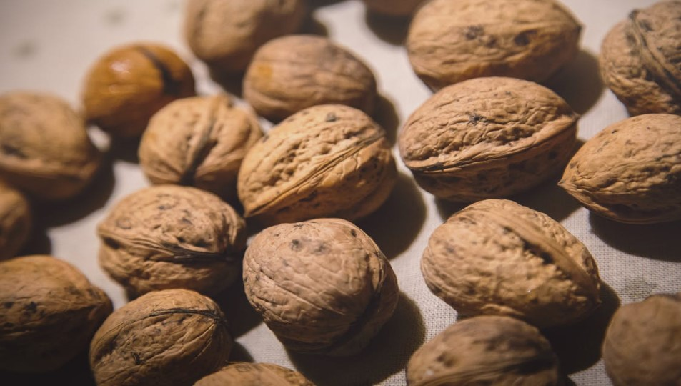 Foods You Can Eat To Beat Depression Walnuts